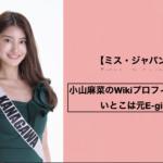 【ミス・ジャパン2021】小山麻菜のWikiプロフィール!いとこは元E-girls?